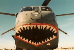 H-3 #63-09676 Shark Teeth